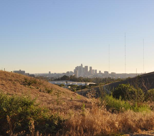 Hillside view of Downtown Los Angeles from El Sereno